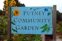 Come Grow With Us At The Putney Community Garden